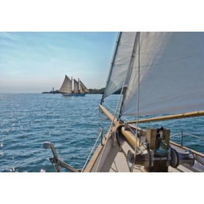 Фотообои Komar National Geographic Sailing