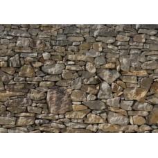 Фотообои Komar Scenics Stone Wall 8NW-727