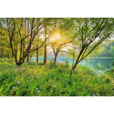 Фотообои Komar National Geographic Spring Lake