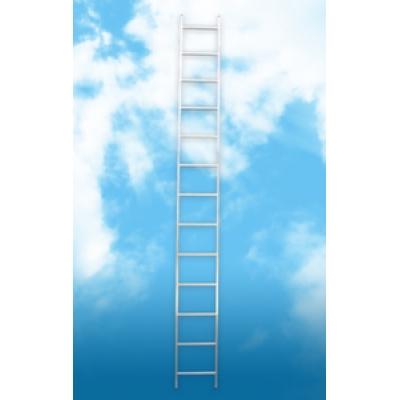 Алюминиевая односекционная лестница (2.51м)