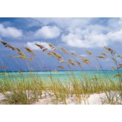 Фотообои Komar National Geographic Ocean Breeze